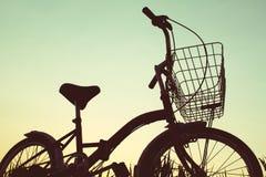 Schattenbild des Fahrrades auf Gras Lizenzfreie Stockbilder