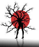 Schattenbild des Frauenbaums auf weißem Hintergrund Lizenzfreie Stockfotos