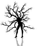 Schattenbild des Frauenbaums auf weißem Hintergrund Stockfoto