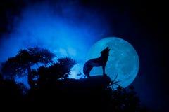 Schattenbild des Heulenwolfs gegen dunklen getonten nebeligen Hintergrund und Vollmond oder Wolf im Schattenbild heulend zum Voll Stockbild
