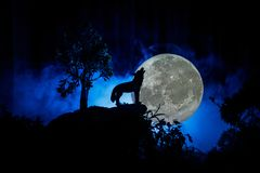 Schattenbild des Heulenwolfs gegen dunklen getonten nebeligen Hintergrund und Vollmond oder Wolf im Schattenbild heulend zum Voll Stockfoto