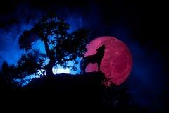 Schattenbild des Heulenwolfs gegen dunklen getonten nebeligen Hintergrund und Vollmond oder Wolf im Schattenbild heulend zum Voll Lizenzfreie Stockfotos
