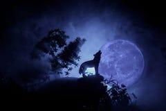 Schattenbild des Heulenwolfs gegen dunklen getonten nebeligen Hintergrund und Vollmond oder Wolf im Schattenbild heulend zum Voll stockbilder
