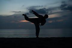 Schattenbild des Kampfkunstmannes Taekwondo ausbildend Stockfotografie