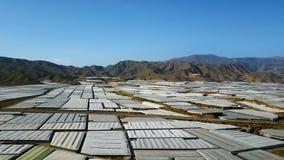 Schattenbild des kauernden Geschäftsmannes Die größte Konzentration von Gewächshäusern in der Welt Almeria, Spanien stock footage