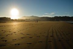 Schattenbild des Mannes und des Hundes, die auf einen sandigen Strand durch Atlantik gehen Lizenzfreie Stockbilder