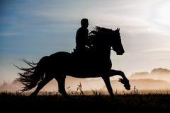 Schattenbild des Pferds und des Reiters im Sonnenuntergang Stockfotos