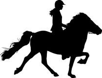 Schattenbild des Reiters auf Pferd Stockbilder
