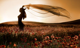 Schattenbild des schönen Mädchens auf dem Mohnblumegebiet Stockfotos