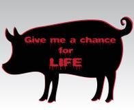 Schattenbild des Schweins mit blutigem Motto Stockfotografie