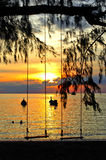 Schattenbild des Schwingens, auf tropischem Strand Lizenzfreies Stockbild