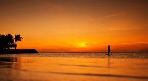 Schattenbild des standup Paddelinternatsschülers bei Sonnenuntergang Lizenzfreies Stockfoto