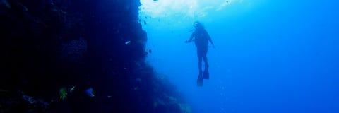 Schattenbild des Tauchers an einer Wand mit Fischen und Korallen Lizenzfreie Stockfotografie