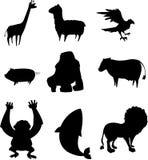 Schattenbild des Tieres Stockfoto