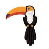 Schattenbild des Tukans mit dem bunten Schnabel und den Federn stock abbildung