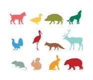 Schattenbild des wilden Tieres und Symbole des wilden Tieres Lizenzfreie Stockfotos