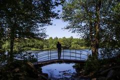 Schattenbild durch den See Lizenzfreies Stockbild