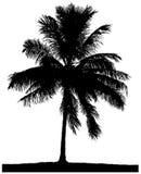Schattenbild einer einzigen Palme Stockbild