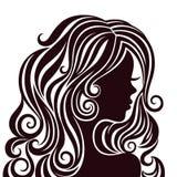 Schattenbild einer jungen Dame mit dem luxuriösen Haar Stockbild