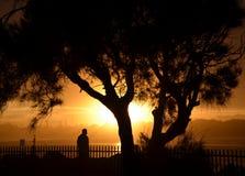 Schattenbild einer Mann- und Baumform Lizenzfreie Stockfotos