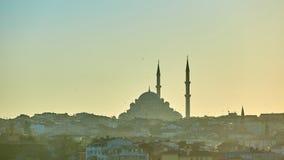 Schattenbild einer Moschee Fatih in den Reflexionen eines Nebels und des Sonnenlichts Abbildung der roten Lilie Lizenzfreies Stockbild