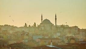 Schattenbild einer Moschee Fatih in den Reflexionen eines Nebels und des Sonnenlichts Abbildung der roten Lilie Lizenzfreie Stockfotos