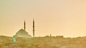 Schattenbild einer Moschee Fatih in den Reflexionen eines Nebels und des Sonnenlichts Abbildung der roten Lilie Lizenzfreie Stockbilder