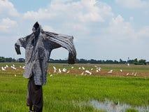 Schattenbild einer Vogelscheuche auf einem Feld Stockfoto