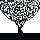 Schattenbild eines Baums. Stockfotos