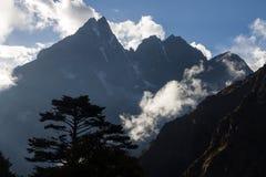 Schattenbild eines Baums auf einem Hintergrund von Bergen in Nepal Stockbild