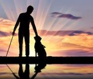 Schattenbild eines blinden behinderten Mannes, der seinen Hundeführer streicht Lizenzfreie Stockfotografie