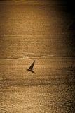 Schattenbild eines Dhow auf goldenem Meer lizenzfreie stockfotos