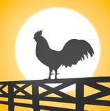 Schattenbild eines Hahns, der auf einem Bretterzaun auf Landschaft sitzt Lizenzfreies Stockbild
