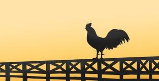 Schattenbild eines Hahns, der auf einem Bretterzaun auf Landschaft sitzt Stockfoto