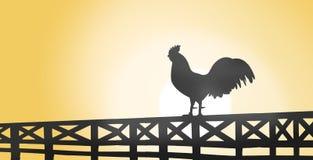 Schattenbild eines Hahns, der auf einem Bretterzaun auf Landschaft sitzt Stockbilder