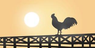 Schattenbild eines Hahns, der auf einem Bretterzaun auf Landschaft sitzt Stockbild