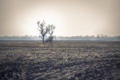 Schattenbild eines Hauses im Nebel Lizenzfreies Stockbild