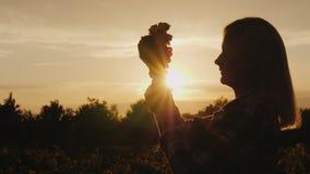 Schattenbild eines Landwirts, der eine Weintraube in seinen Händen gegen die untergehende Sonne hält stockfotos