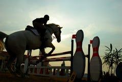 Schattenbild eines Pferds stockfotos