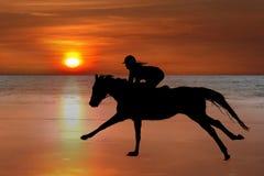 Schattenbild eines Pferds und des Mitfahrers, die auf Strand galoppieren Lizenzfreies Stockfoto