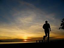 Schattenbild eines Rüttlers im Sonnenaufgang Stockbilder