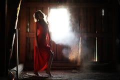 Schattenbild eines schönen Mädchens in einem roten Kleid Stockbild