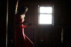 Schattenbild eines schönen Mädchens in einem roten Kleid Lizenzfreie Stockfotografie