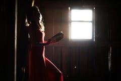 Schattenbild eines schönen Mädchens in einem roten Kleid Stockfotografie