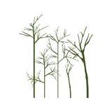Schattenbild mit Bäumen ohne Blätter stock abbildung