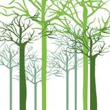 Schattenbild mit Bäumen ohne Blätter schließen oben stock abbildung