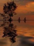 Schattenbild mit zwei Mountainbikern im Sonnenaufgang Lizenzfreie Stockfotografie