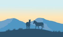 Schattenbild mit zwei Zebras auf dem Berg vektor abbildung