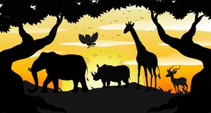 Schattenbild Safari Scene an der Dämmerung Stockfotografie