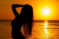 Schattenbild am Sonnenuntergang stockbild